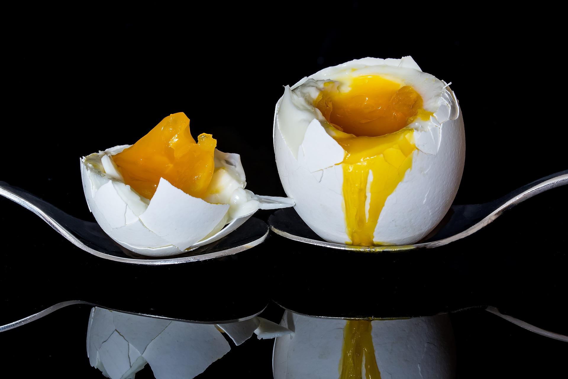 żółtko jaja jak wykrozystać żółtko wartości odżywcze żółtka