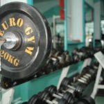 Euro Gym