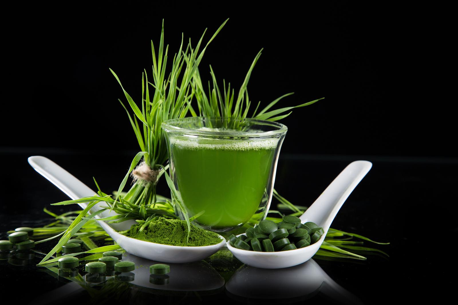 zielony jeczmien gemini